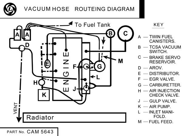 1977 to 1980 vacuum hose routeing diagram   mgb  u0026 gt forum