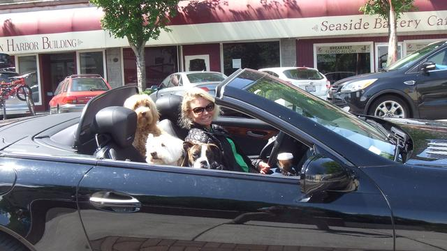 Happiness is Convertible with Friends.jpg