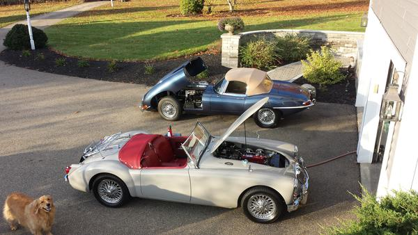 MGA and E-Type fall of 2014.jpg