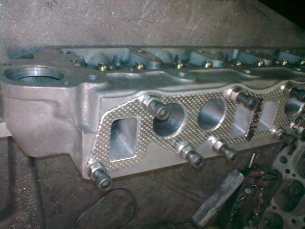 alloy head 3.jpg