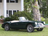 michael killeen 1959 MG MGA British Racing Green